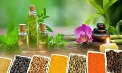 Arabic & Unani Medicine