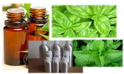 Aromatic Medicines