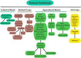Bioalcohols and Bioethanol