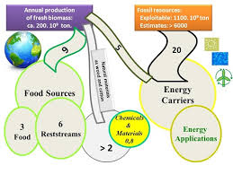 Bioenergy Applications