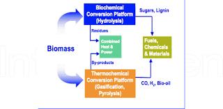 Bioenergy Conversion Methods