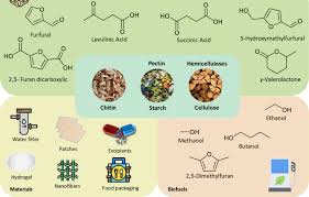 Biomass Applications