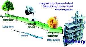 Biomass feedstocks for renewable energy generation