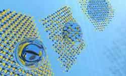 Biomedical Nanomaterial's