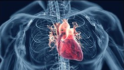 Cardiac Disorders and Cardiotherapy
