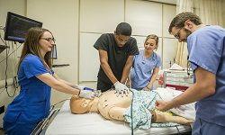 Cardiac Nursing
