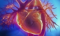 Cardiovascular Disease, Risk factors and Nutrition