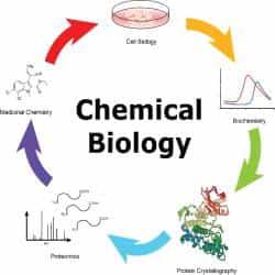 Chemical Biology