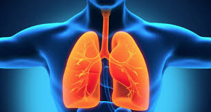 Chronic Obstructive Pulmonary Disorder and Forms of reduced lung function