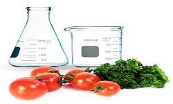 Development in Food Technology