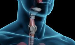 Endocrine Cancers