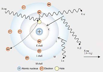 Energy Dispersive (EDS/EDX) X-RAY Spectroscopy