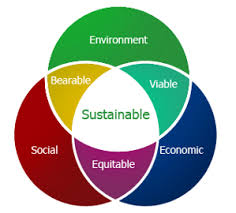 Environmental Sustainability and Development