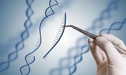Epigenetics Biomarkers