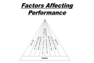 Factors Affecting Sports Performances