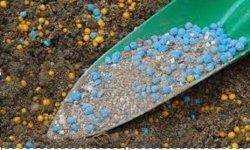 Fertilizers & Pesticides