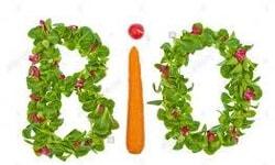 Food Biology