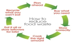 Food Waste and Recycling