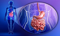 Gastrointestinal pathology