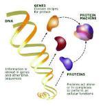 Genomics and Metabolomics