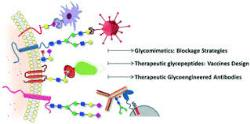 Glycans in Drug Design