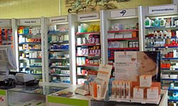 Green and Community Pharmacy