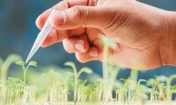 Green Industrial biotechnology