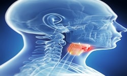 Head and Neck Pathology