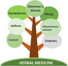 Herbal Drug Formulations