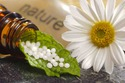 Homeopathy medicine and holistic health