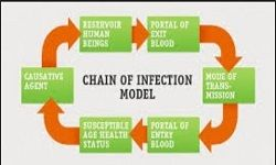 Infection Control Procedures