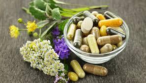 Medicinal and Traditional Herbs
