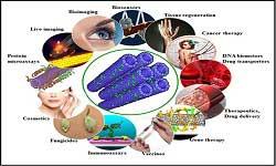 Nanotechnology Applications