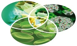 Nanotechnology in Environmental Research