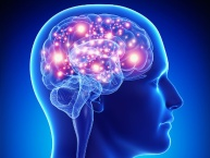 Neuropsychiatry and Clinical Neurology