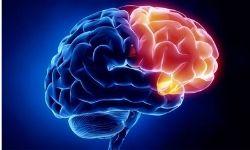 Novel Neurotherapeutics, Diagnostics & Case Studies