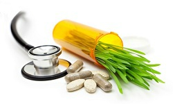 Nutraceuticals and Medicinal Foods