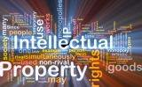 Patent access and intellectual property and FDA regulations