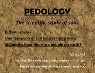 Pedology and Soil Horizons