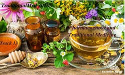 Pharmacognosy and Traditional Medicine