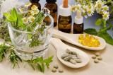 Pharmacognosy & Botony