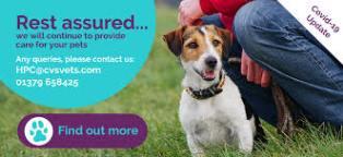Preventive Pet Healthcare & Club