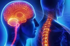 Rare Diseases in Neurology