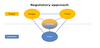 Regulatory Approach for Biosimilars