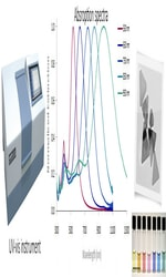 Spectroscopy tools in Nanotechnology