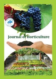 Plant Biotechnology Conferences | Agriculture Conferences