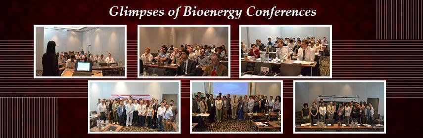 - Bioenergy 2019