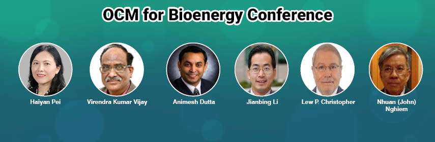 - Bioenergy 2020