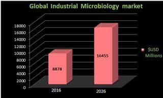 Graphical representation of Microbiology Market Analysis