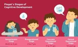 cognitive development - Neurocognitive 2019